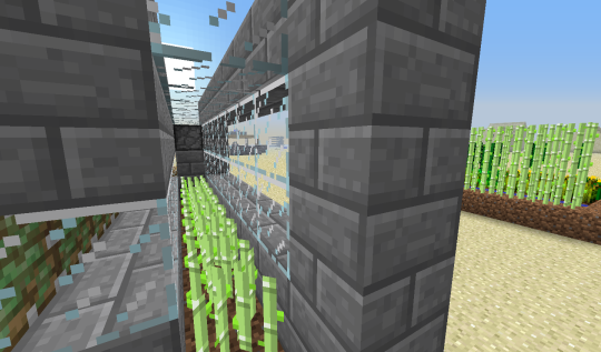 Cover up the water that sits next to the sugar cane. Here I have used stone brick and glass, because I like being able to look at my farms. But, unlike Schrödinger's cat, whether you look at it or not doesn't change anything.