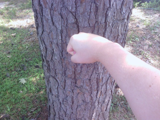 """In the Minecraft mod """"real life"""", punching a tree doesn't chop down the tree. Instead, it gives you bloody knuckles, and who needs bloody knuckles?"""