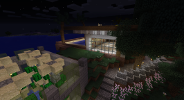 A view of the east end of the house, glimpsing the pool in the back. In the foreground is a crazy effective cactus farm whose roof I need to finish.